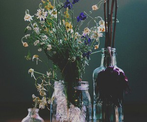 flowers, beautiful, and decoration image