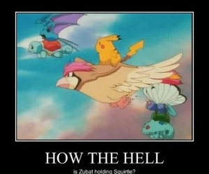 pokemon how the hell? image