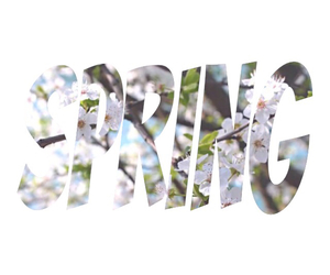 happiness, spring, and love image