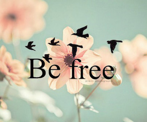 birds, flowers, and freedom image