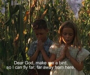 bird, forrest gump, and quotes image
