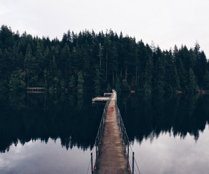 nature and lake image