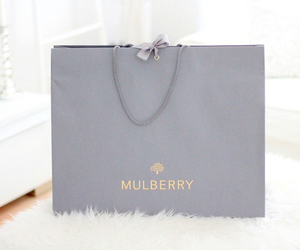 mulberry, fashion, and bag image
