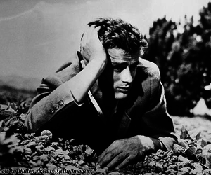actor, film, and james dean image