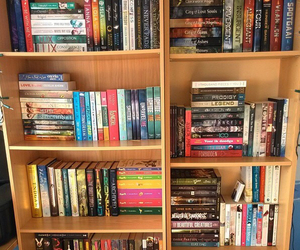 bookshelf, lux, and reader image