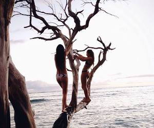 sea, summer, and tree image