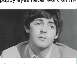 Paul McCartney and puppy eyes image