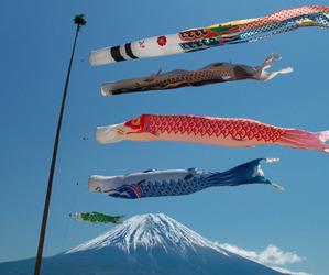 fujiyama, japan, and mt.fuji image