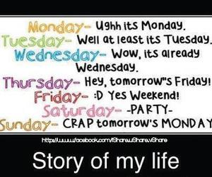 funny, life, and quote image