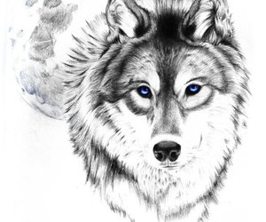 wolf, tattoo, and art image