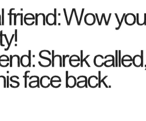 friends, best friends, and shrek image
