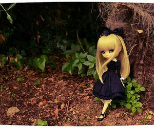 forest and pullip image