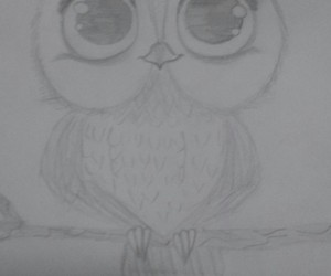 draws, owl, and cute image