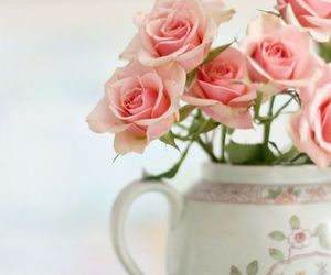 beautiful, lovely, and rose image
