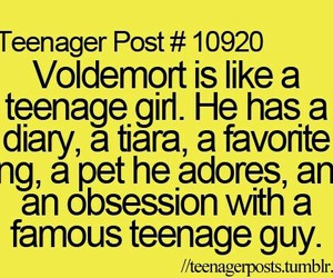 harry potter, voldemort, and teenager post image