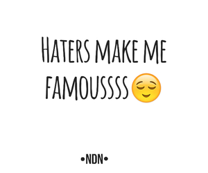 famous, funny, and haters image
