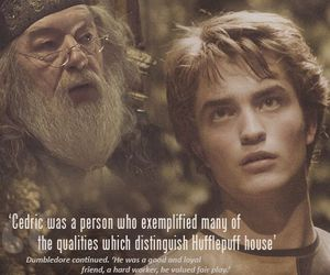 harry potter, dumbledore, and hufflepuff image