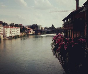 beautiful places, flowers, and river image