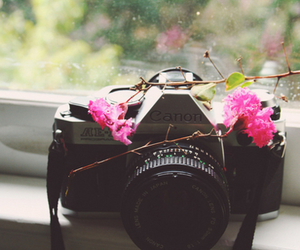 camera, flowers, and canon image