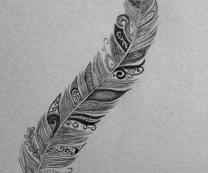 dessin, drawing, and feather image