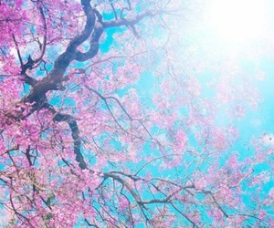 wallpaper, flowers, and tree image