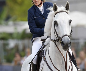 horse and showjumping image