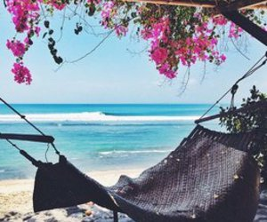 summer, beach, and flowers image