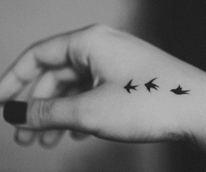 birds, black and white, and fly image