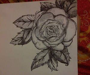 draw and rose image