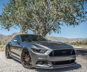 car and '15 ford mustang image
