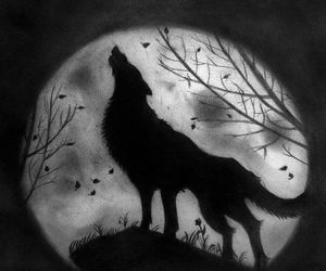 black, moon, and wolf image