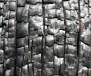 texture and grey image