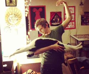 cat, dance, and funny image