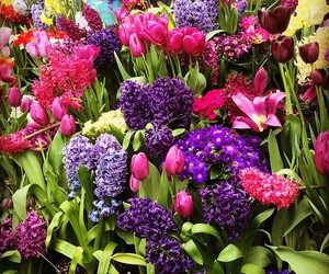 bright colors, easter, and flowers image