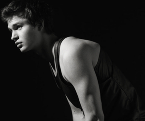 love and ansel elgort image