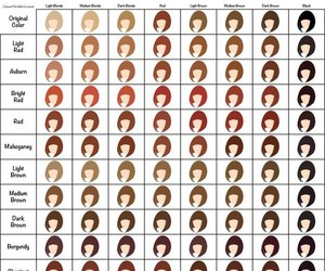 chart and color hair image