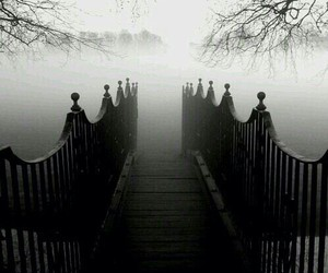 dark, bridge, and fog image