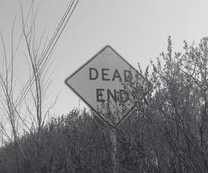 dead end, sign, and grass image
