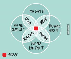 life, purpose, and passion image
