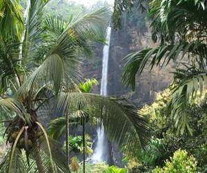 nature, waterfall, and tropical image