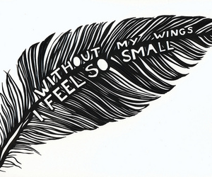 wings, feather, and quote image