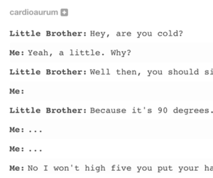 siblings, tumblr, and text post image