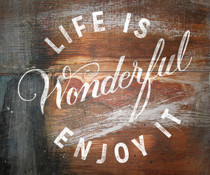 life, wonderful, and quotes image