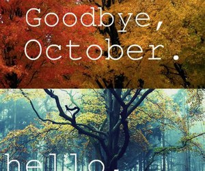 bb, fall, and months image