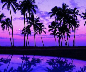 purple, summer, and beach image