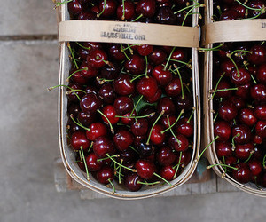 cherry and fruit image