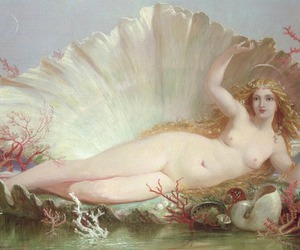 art, Venus, and aphrodite image