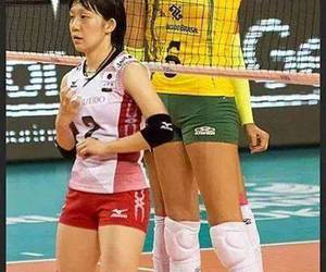 funny, help, and volleyball image