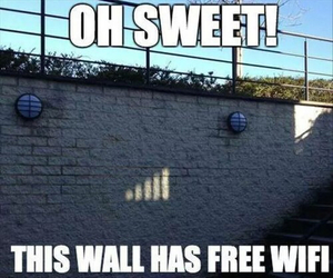 funny, wifi, and wall image