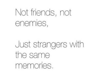 enemy, friends, and strangers image